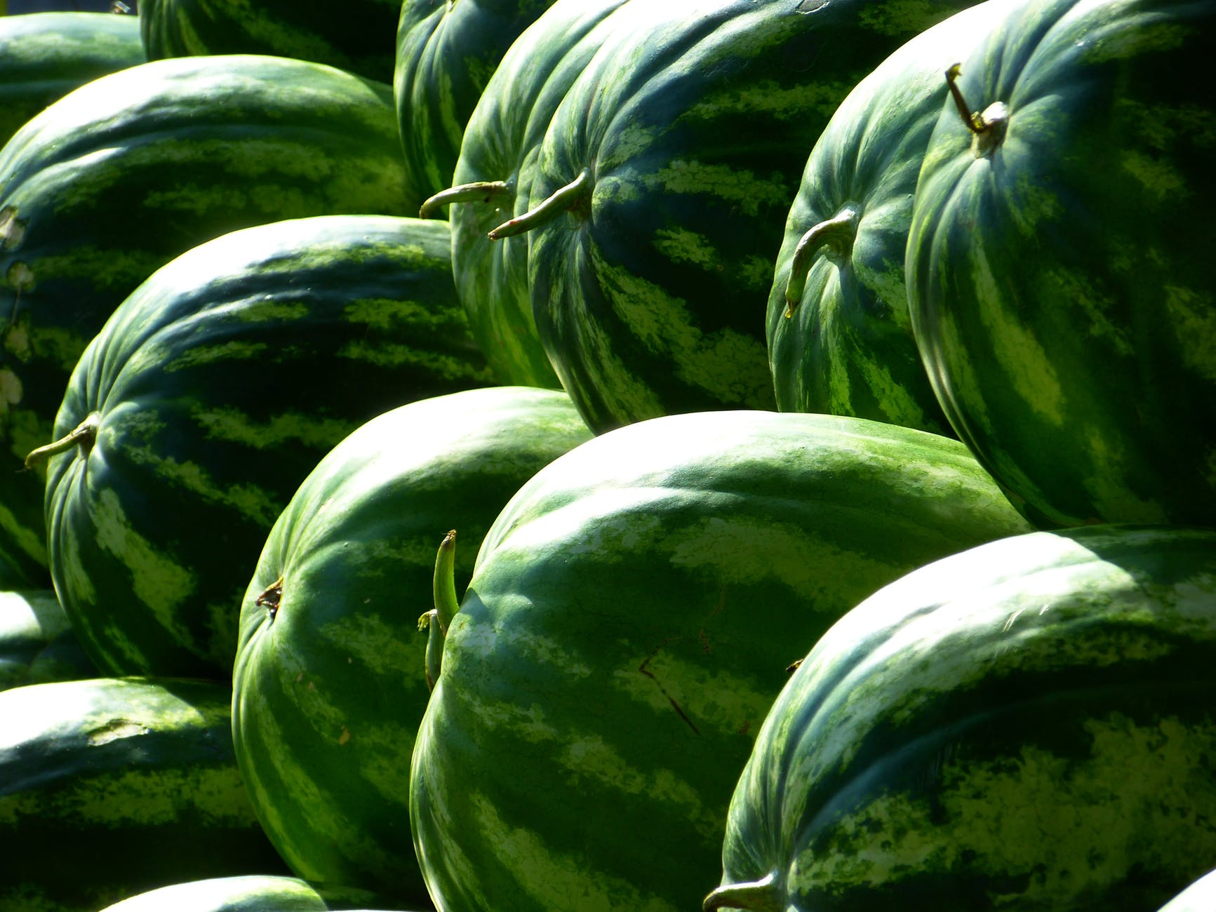 green piled watermelon